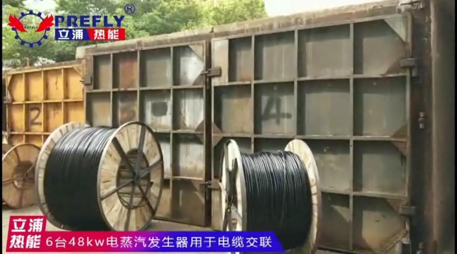 6台48kw电蒸汽发生器 用于电缆交联.png