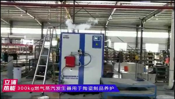 300kg燃气蒸汽发生器用于陶瓷制品养护.png