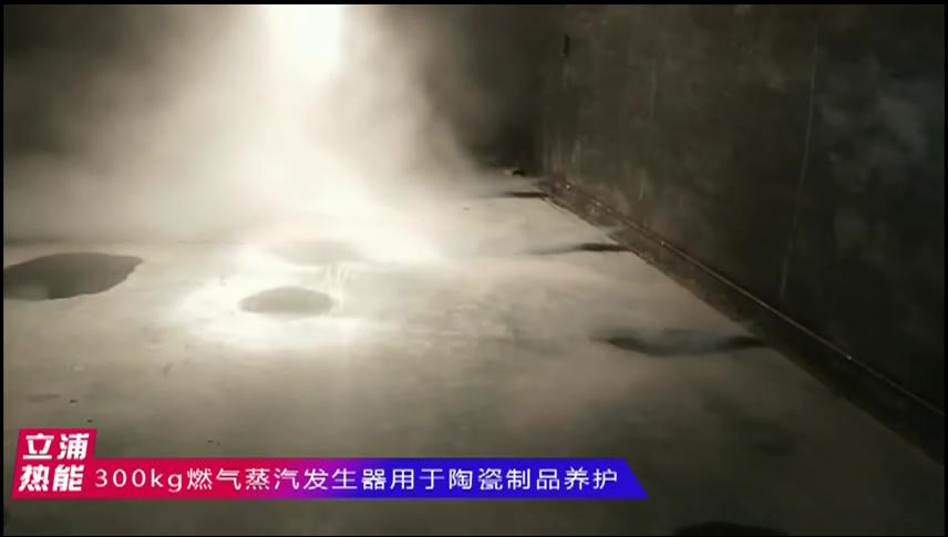 300kg燃气蒸汽发生器用于陶瓷制品养护1.png