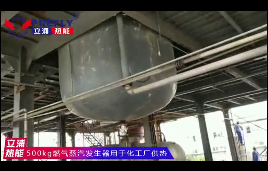500kg燃气蒸汽发生器 用于化工厂供热1.png